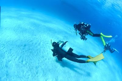 海の底を眺め回す